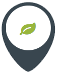 icon-image1
